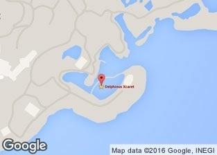 Nado con delfines en Xcaret Mapa - Delphinus
