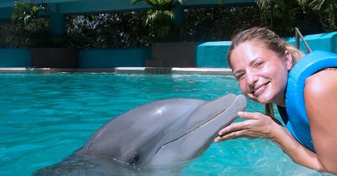 nadar-con-delfines-en-cancun-mob-habitat7