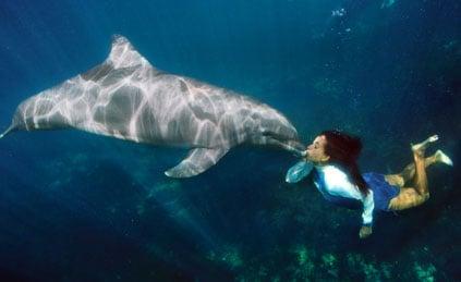 delfinarios-en-cancun-delphinus-veterinaria-1-1.jpg